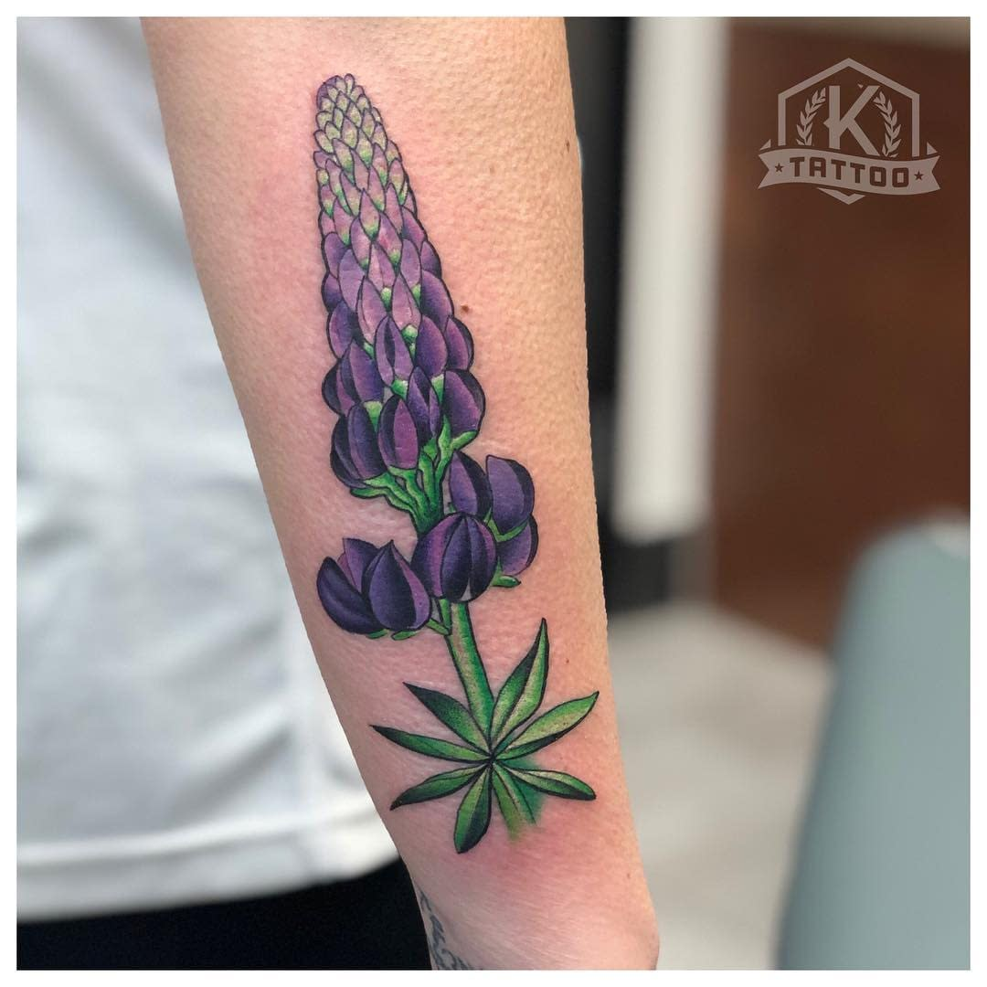 color_Lupine_flower
