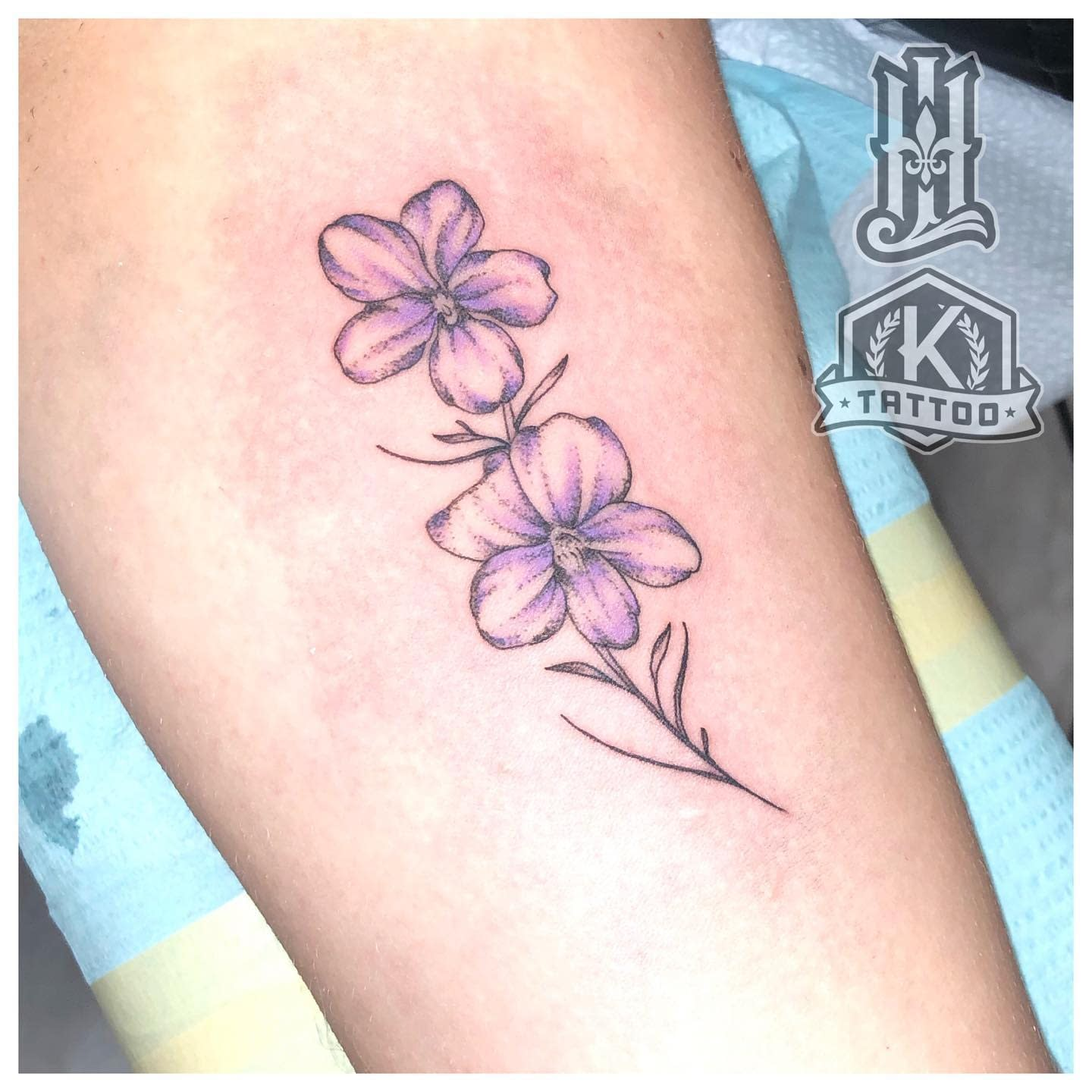 color_violet_flower